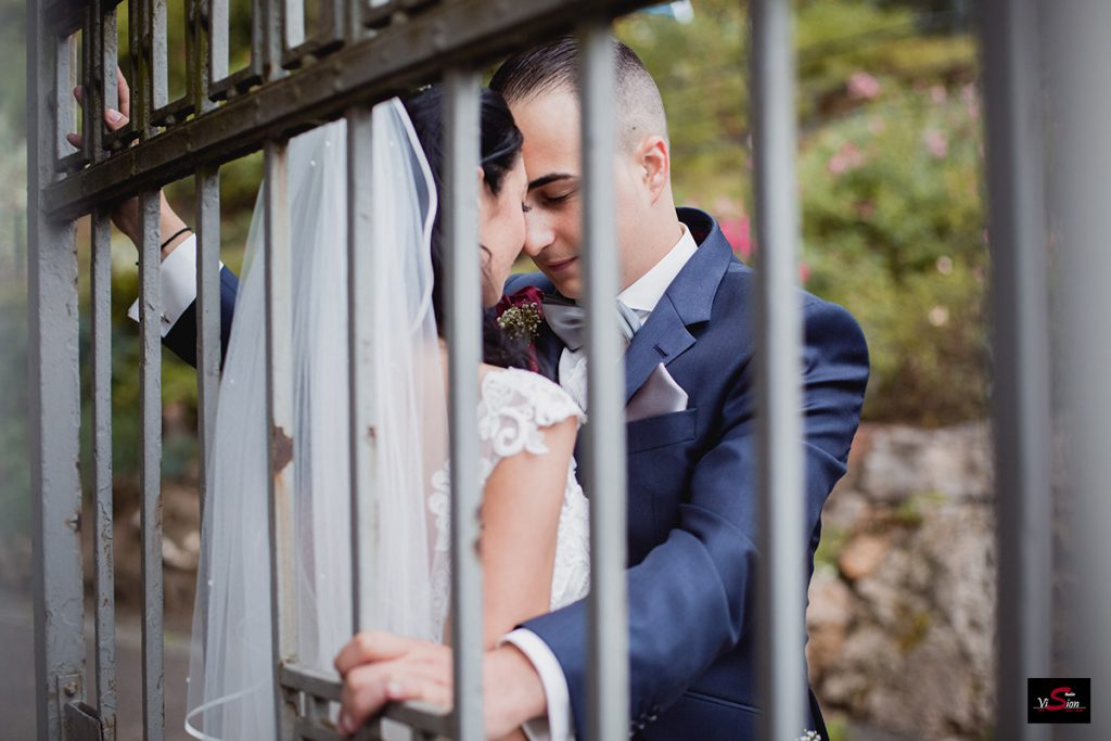 Hochzeitsfoto STUDIO VISION C 12