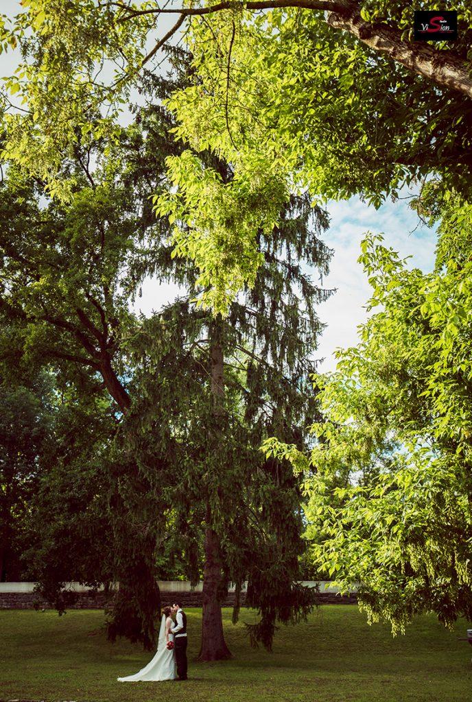 Hochzeitsfoto STUDIO VISION E 15