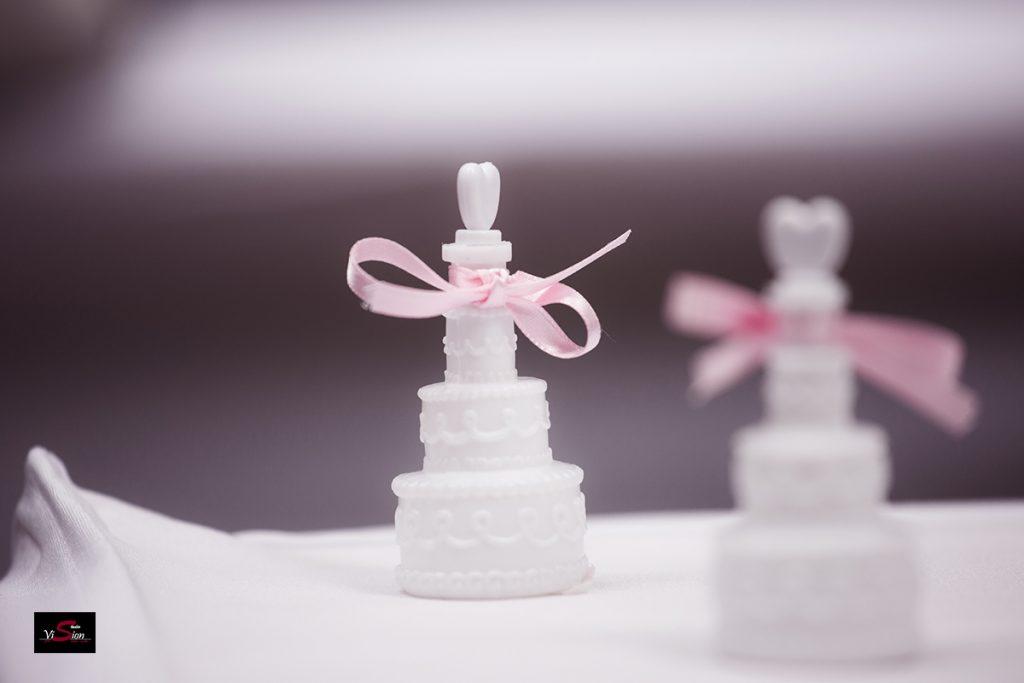 Hochzeitsfoto STUDIO VISION F 12